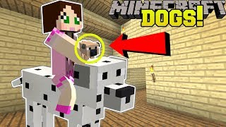 Minecraft: TOO MANY DOGS!! (39 EPIC TYPES OF DOGS!) Mod Showcase