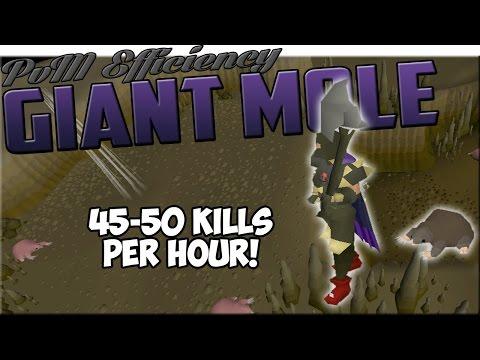 Giant Mole Efficiency Guide + Loot From 100hrs | Oldschool Runescape