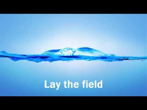 Lay the field 2 examples