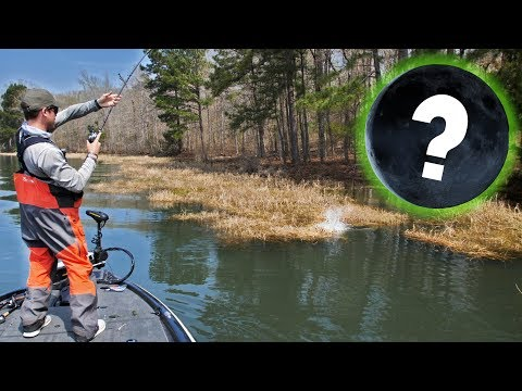 New MOON Affect VS Spring Bass Fishing