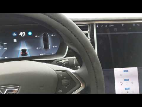 Tesla Bioweapon Defense Mode Successfully Evacuates Skunk Smell From Vehicle! :)
