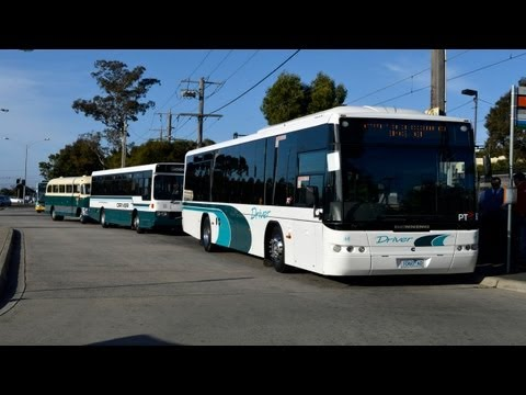 Driver buses at Glen Iris - BCSV farewell tour