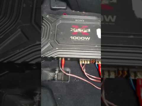 Amp battery fuse blown