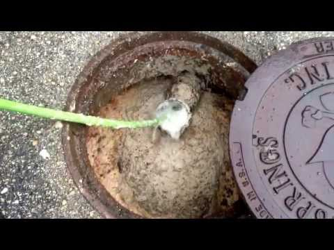 Restaurant grease trap drain cleaning
