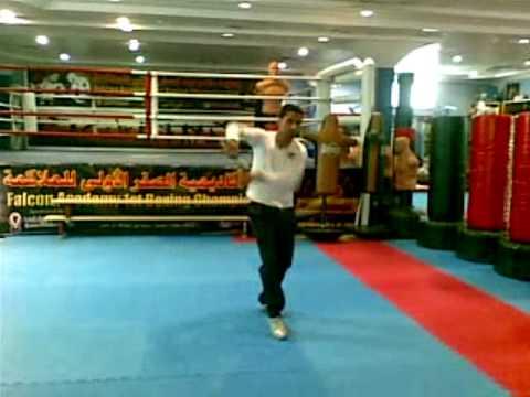 adil youssefi katar 2