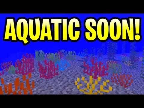 Minecraft Aquatic Update Release Date Is Coming! New Snapshot 18W20A PE, PS4, Xbox One & Switch