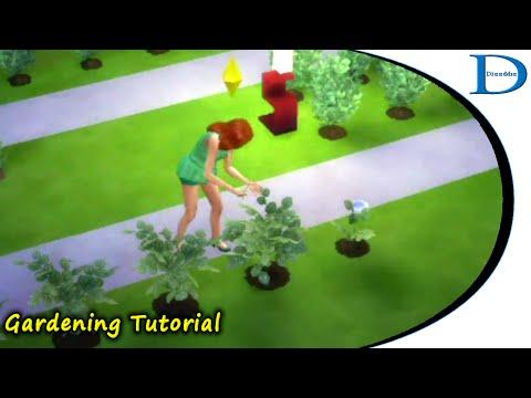 05 - The Sims 4 - Gardening Tutorial - Grafting