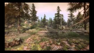The Vanishing Of Ethan Carter : I Am Lost *no Spoilers*