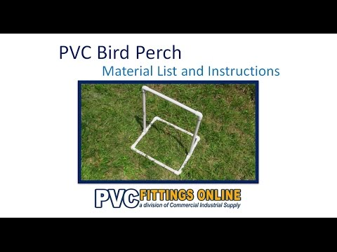 PVC Bird Perch - DIY Guide