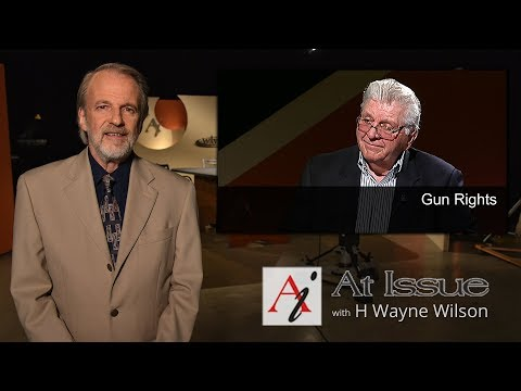 At Issue #3004 - Gun Rights