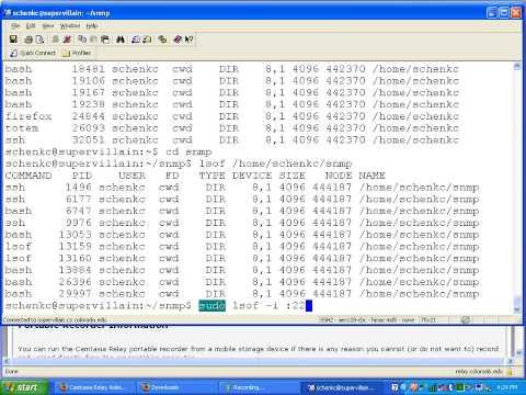 Linux command line - lsof