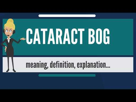 What is CATARACT BOG? What does CATARACT BOG mean? CATARACT BOG meaning & explanation