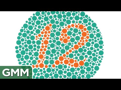 Are You Color Blind? TEST