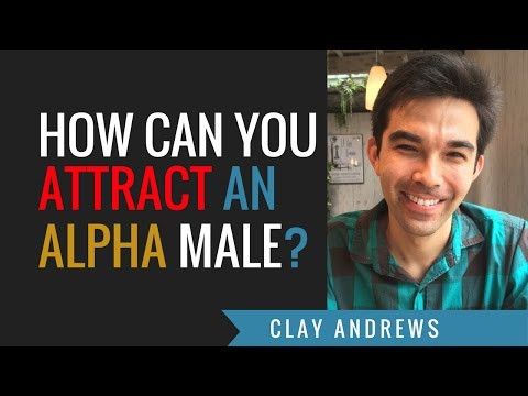 How Can You Attract An Alpha Male?