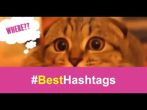 Popular And Trending Hashtags - Get Hashtag Words To Boost Your Social Marketing