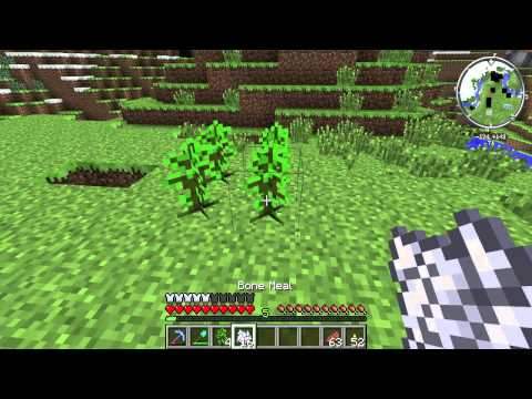 How to Multiply Jungle Saplings in Minecraft : Minecraft Tips