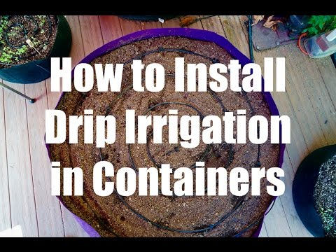 How to Install a Drip Irrigation System in Containers // Growing Your Fall Garden #5