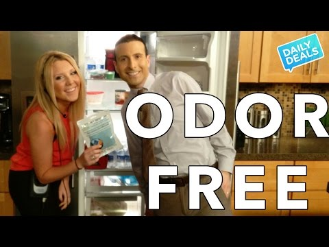 How To Get Rid Of Odor: Cars, Home, Pets, Fridge Deoderizer ► The Deal Guy