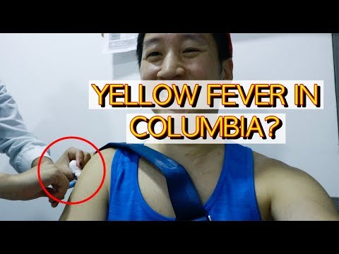 [Yellow Fever Vaccination in Medellin Colombia] Travel VLog