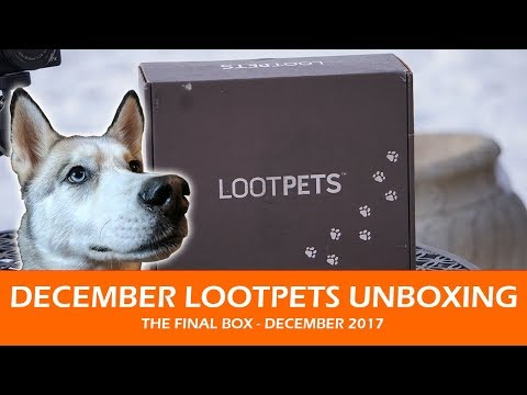 DECEMBER LOOTPETS UNBOXING | December 2017 - The Final Box