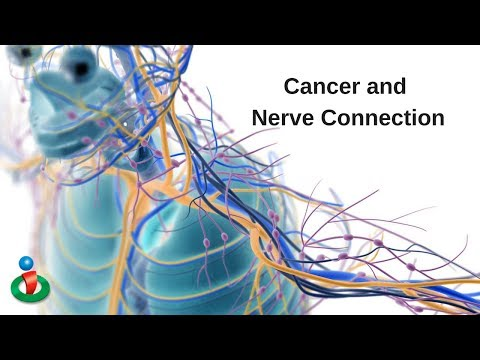 Cancer and Nervous System Connected!