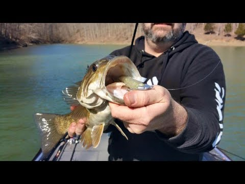 Why Swimbait Heads Make a Difference
