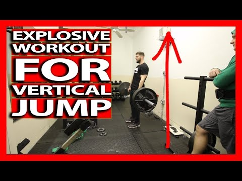 EXPLOSIVE FULL BODY WORKOUT FOR POWER AND STRENGTH (Full Follow Along) Increase Your Vertical Jump