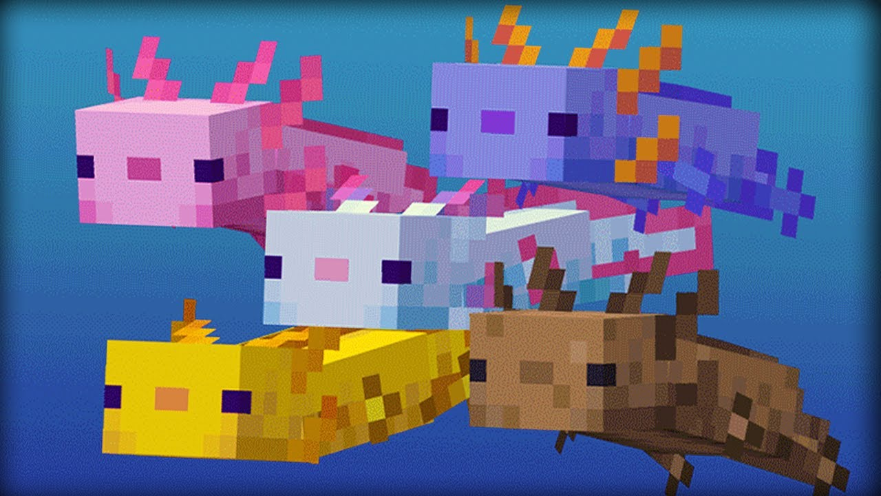 30 Things You Didn't Know About Axolotls in Minecraft