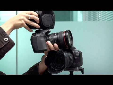 Canon 60D vs 550D vs 7D - which one is better?