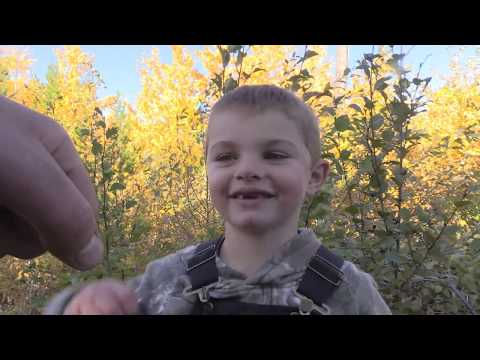 CRAZIEST MOOSE FOOTAGE OF A SIX YEAR OLD CALLING IN MONSTER BULL TO 5 YARDS!!!