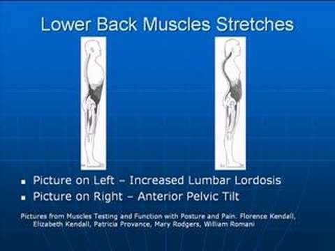 Posture Exercises - Lower Back Stretches