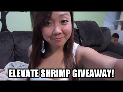 Elevate Shrimp (+ Extra Surprise) Giveaway!!