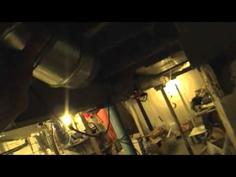 Raccoons Trapped In Basement (LQ)