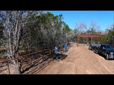 Horse Fence, Shed and Corral