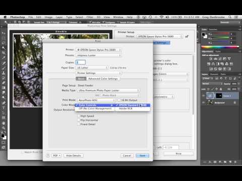 Printer Settings for Epson