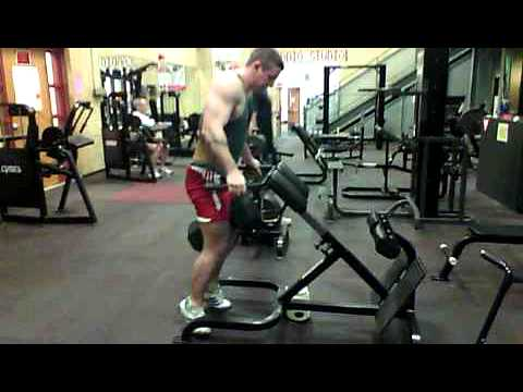 YNT Weighted Dips : +120 lbs.