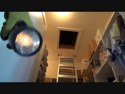Checking out a water leak in an attic
