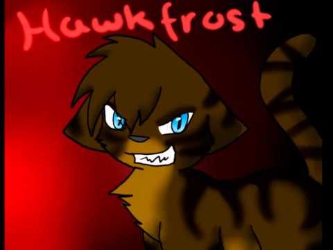 Hawkfrost- You're gonna go far kid