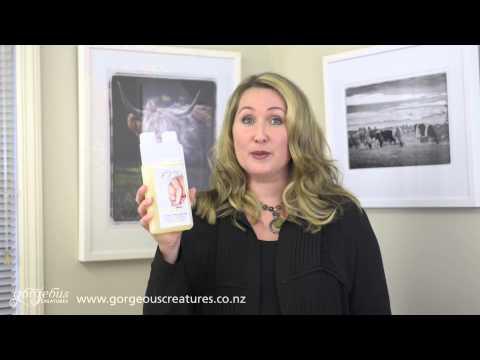 Sheepskin Woolwash Shampoo Introduction