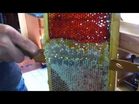 Honey harvesting time. Testing sharp knife to cut caplings on honey  frames.