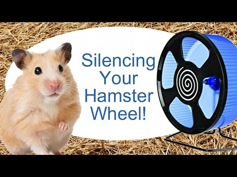 Silencing Your Hamster Wheel!