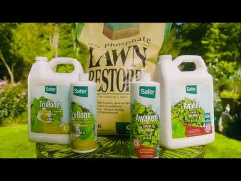 How to Choose the Right Lawn & Garden Fertilizer