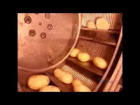 How It's Made Frozen French Fries