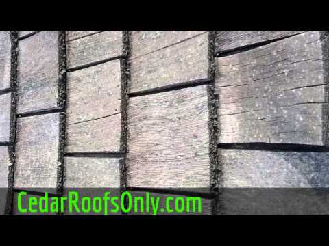 Replace Curled Cedar Shake Shingle