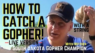 How to Catch a Gopher using only String