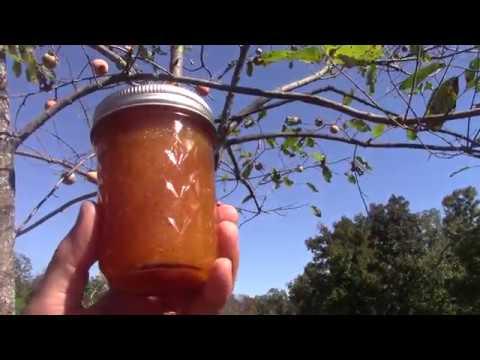 Persimmon Jam / Fruit Preserve / Spread - Part 2 Final