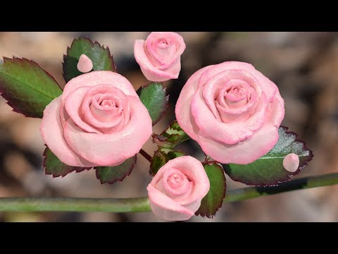 DIY Realistic Roses Out Of Clay | Beginner