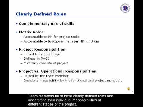 Building Effective Project Teams