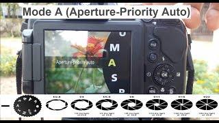 Nikon coolpix B700 P900 B500 Best Focus (MF V AF) Setting For video