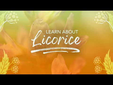 Wild about Licorice | Pukka Herbs